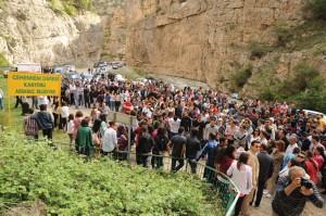 ardanuc kanyonu (1)