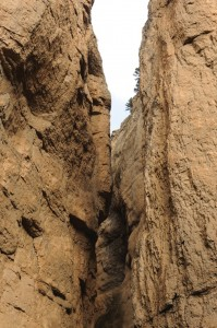 ardanuc kanyonu (6)