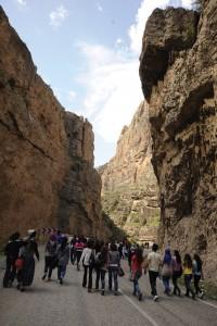 ardanuc kanyonu (9)